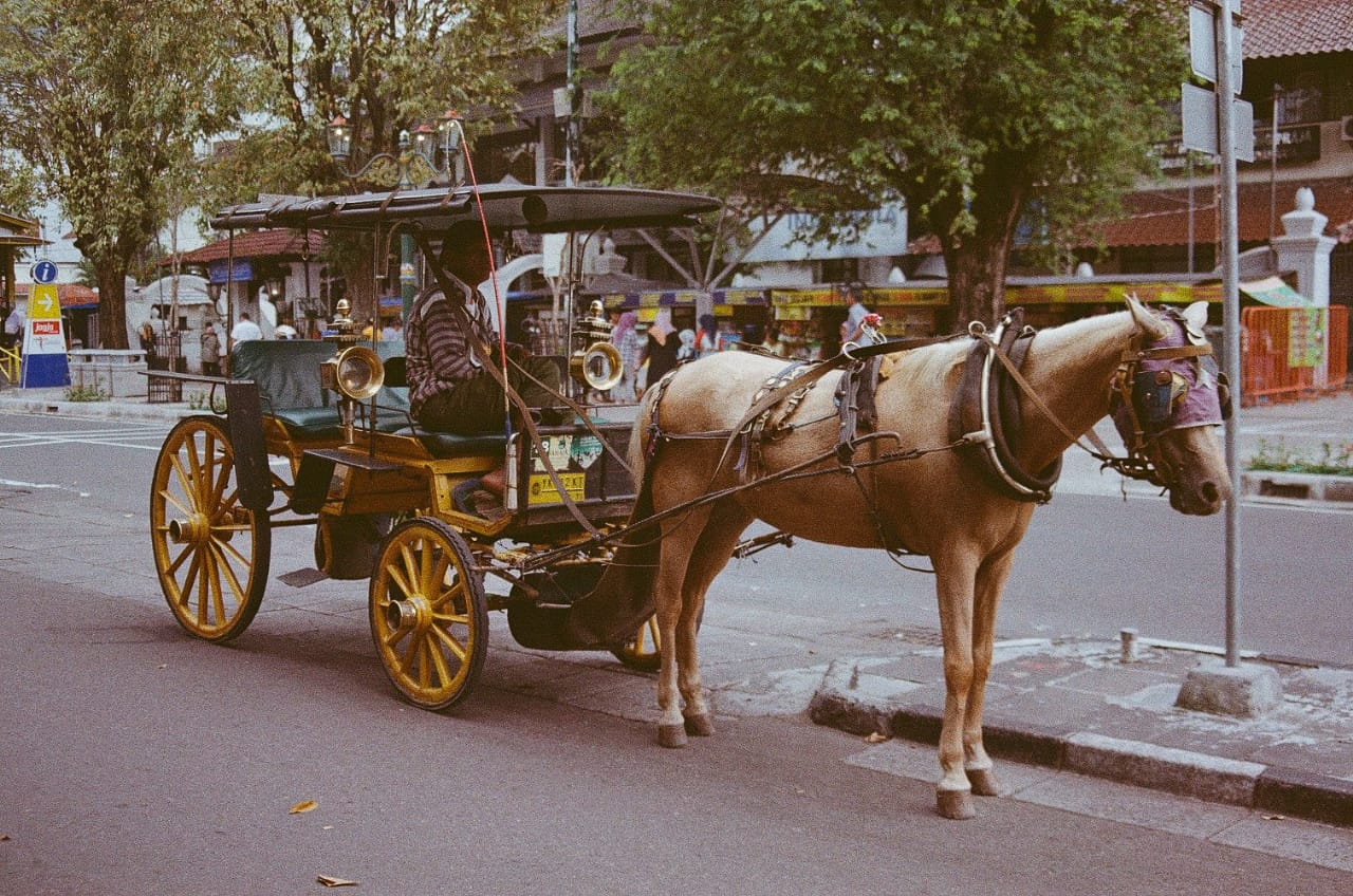 Kereta kuda jogja